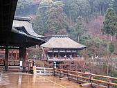 2010 0131-0207 京都:照片 024