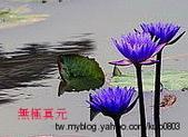 宗教:ap_F23_20100126064541159.jpg