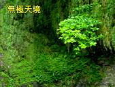 風景:照片20121030 247