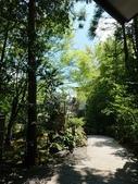新竹公園:106824日本day2二姨拍_170901_0035.jpg