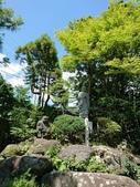 新竹公園:106824日本day2二姨拍_170901_0034.jpg