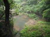 獅頭山水濂橋步道、藤坪步道:IMG_0572.JPG