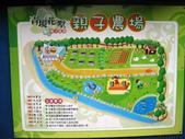 青境花墅親子餐廳:IMG_3412.JPG