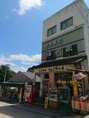 新竹公園:106824日本day2二姨拍_170901_0037.jpg