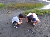 香山濕地:P_20190629_184636_vHDR_Auto.jpg