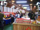金勇番茄農場:IMG_3344.JPG