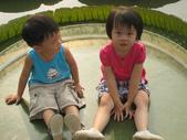 台南- 坐大王蓮:IMG_2864.JPG