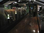 台灣博物館:IMG_2329.jpg