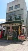 新竹公園:106824日本day2小姨拍_170912_0067.jpg