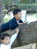 清華大學 - 餵松鼠:影像016.jpg