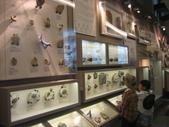 台北土銀展覽館:IMG_2260.JPG