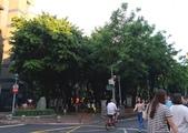新竹公園:P_20170709_180257_vHDR_On.jpg