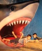 奇幻不思議:3D幻視藝術展:IMG_2855.JPG