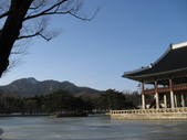 韓國旅遊:2008.01.23