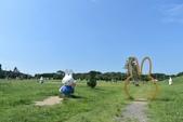 201809米飛兔公園:DSC_7661.JPG