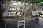 20171009赤腳ㄚ生態農莊:DSC_5153.JPG
