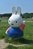 201809米飛兔公園:DSC_7663.JPG