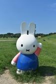 201809米飛兔公園:DSC_7698.JPG
