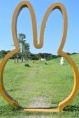 201809米飛兔公園:DSC_7958.JPG