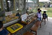 201702赤腳ㄚ生態農莊:DSC_0790.JPG