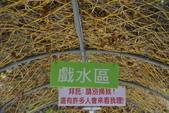 201702赤腳ㄚ生態農莊:DSC_0995.JPG