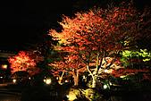 2009_京都紅葉狩Part I (11.25-11.26):IMG_1382.JPG