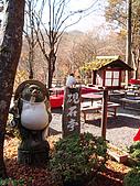 2009_京都紅葉狩Part I (11.25-11.26):DSC01128.JPG