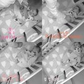 ★☆ 2021 ☆★:不想睡的小吐司被強迫入睡:p