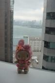 。 Hong Kong & Macau 。: