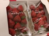2016。:耶耶~ 我愛的草莓