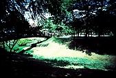 維維塔的樂摸生活:001-012.jpg