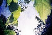 維維塔的樂摸生活:001-014.jpg