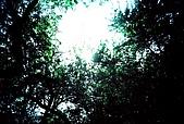維維塔的樂摸生活:001-011.jpg