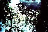 維維塔的樂摸生活:001-018.jpg