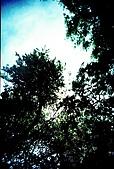 維維塔的樂摸生活:001-009.jpg