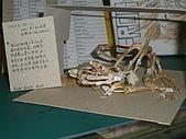大屍的歡樂塗鴉:蛙骨近照