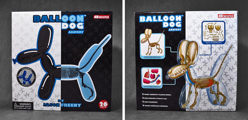 4D MASTER BALLOON DOG ANATOMY:16.jpg