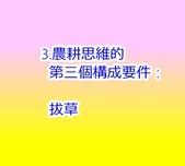 LKY:IMG_2800.JPG