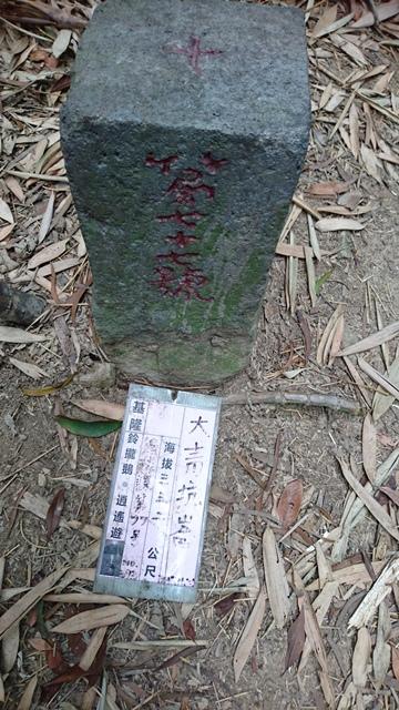 2015.11.22姜子寮山:DSC_0210.JPG