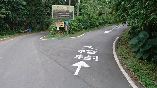 2015.11.22姜子寮山:DSC_0239.JPG