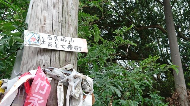 2015.11.22姜子寮山:DSC_0245.JPG