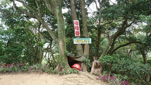 2015.11.22姜子寮山:DSC_0195.JPG