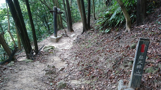 2015.11.22姜子寮山:DSC_0200.JPG