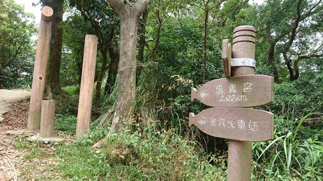 2015.11.22姜子寮山:DSC_0283.JPG