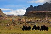 2014夏  西藏(轉山-剛仁波齊)):2014夏-西藏09轉山(3).jpg