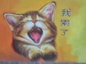 【嘉義。民雄】貓的彩繪村:P_20150411_093839.jpg
