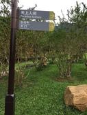 【中國。深圳】 仙楂植物園:IMG_1459.JPG