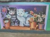 【嘉義。民雄】貓的彩繪村:P_20150411_093545.jpg