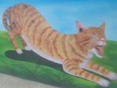 【嘉義。民雄】貓的彩繪村:P_20150411_093700.jpg