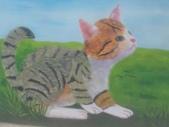 【嘉義。民雄】貓的彩繪村:P_20150411_093643.jpg